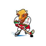 хоккей чемпионат мира финал 2014 минск