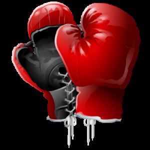 правила профессионального бокса