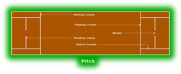 правила крикета питч
