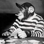 солид стиль в покере
