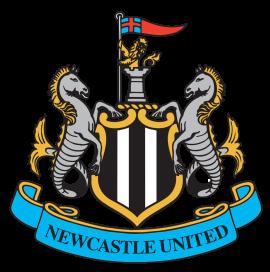 АПЛ, 21 тур: Ньюкасл - Манчестер Юнайтед, 12 января 2016 год
