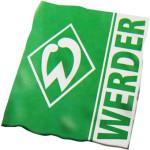 Бундеслига, 7 тур: Вердер - Байер, 15 октября 2016 год