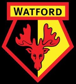 АПЛ, 21 тур: Уотфорд - Мидлсбро, 14 января 2017 год