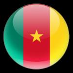 Кубок Африки, полуфинал: Камерун - Гана, 2 февраля 2017 год