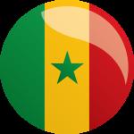Кубок Африки, 1/4: Сенегал - Камерун, 28 января 2017 год