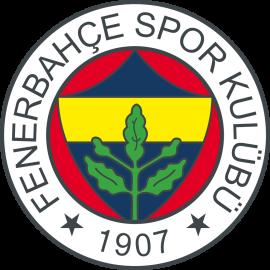 Лига Европы, 1/16: Фенербахче - Краснодар, 22 февраля 2017 год