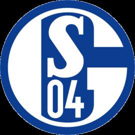 Бундеслига, 22 тур: Шальке - Хоффенхайм, 26 февраля 2017 год